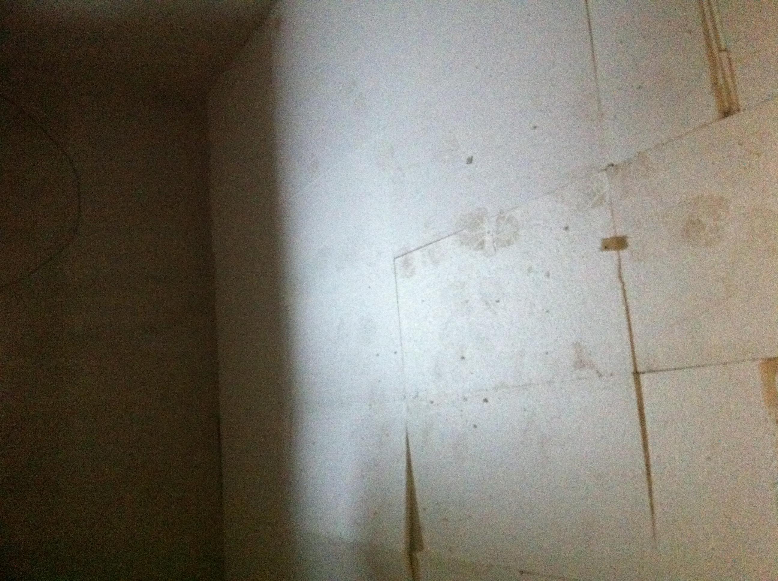 Estrich Im Keller Und Verputzen Der Speis Unser Hausbau